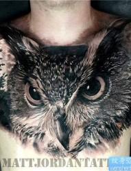 个性的胸部纹身图案