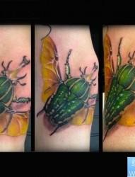 胳膊个性昆虫纹身图案
