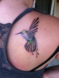 女性肩部漂亮的小鸟纹身