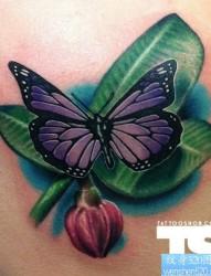 肩部一款个性縁叶蝴蝶纹身图案