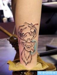 一款腿部羚羊纹身图案