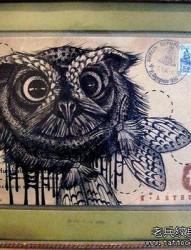 猫头鹰纹身手稿图案