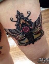 女性腿部个性的飞蛾纹身图案