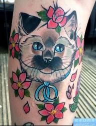 腿部彩色猫咪花纹身图案