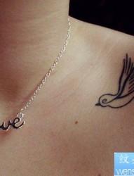 一款女性肩部燕子纹身图案