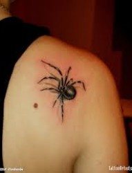 肩部漂亮逼真的蜘蛛纹身