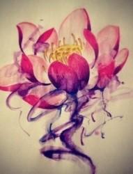 漂亮唯美的莲花手稿