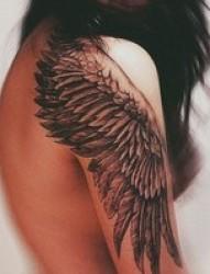 给双手插上梦想的翅膀