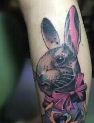 女性小腿兔子纹身图案