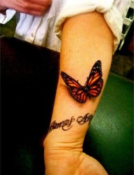 手臂上一只漂亮的蝴蝶纹身