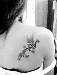 女生肩部时尚的凤凰图腾纹身