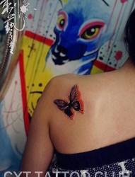 漂亮的蝴蝶女生后背纹身