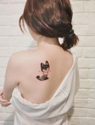 可爱的小动物后肩纹身