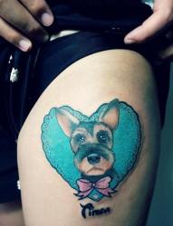 一组可爱的小动物图片纹身