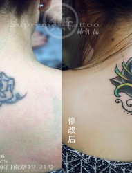 美女纹身修改遮盖 女生纹身 赫作品 纹身师作品 手稿纹身