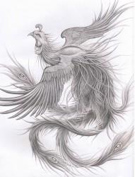女士简易黑白飞舞的凤凰纹身手稿图案