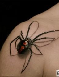 3d立体蜘蛛纹身图案大全