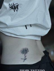 雏菊纹身图案-塔木纹身