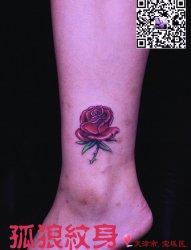 美女脚踝玫瑰花纹身 宝坻孤狼纹身工作室作品 宝坻纹身 天津纹身 孤狼纹身 美女纹身 脚踝纹身 玫瑰花纹身