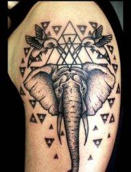各种各样的大小象纹身图案作品