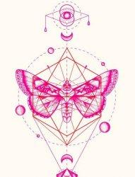 花和动物图腾纹身手稿