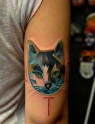 手臂上彩色猫头像纹身