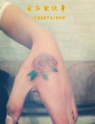 玫瑰纹身 金左堂纹身 该疤痕修改纹身 安阳纹身水冶纹身