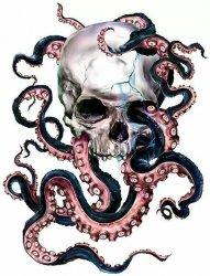 大章鱼骷髅头纹身图案手稿素材