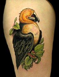 彩色的水墨风格纹身动物鸟纹身图案
