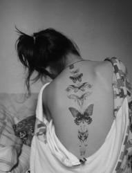 欧美女性背部唯美的蝴蝶纹身