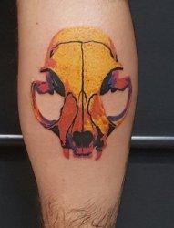 小腿上彩色的猫的骷髅头纹身图片