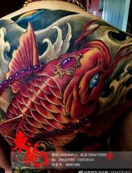 满背鲤鱼纹身 东龙纹身作品 济宁纹身 邹城纹身