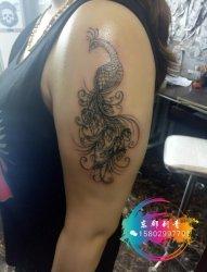 漂亮的线条孔雀纹身