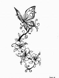 黑色的蝴蝶和植物藤花朵的简单线条纹身手稿