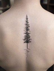 多款文艺小清新创意个性精美小图案纹身图案