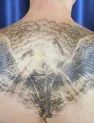 三张背部有翅膀beibuyouchibang的图案作品欣赏