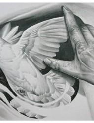 白鸽和手的纹身手稿