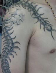 肩部手臂蜈蚣纹身作品