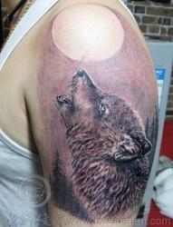 男士手臂超酷的苍狼望月纹身图案