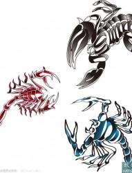 三只彩色的蝎子纹身手稿图