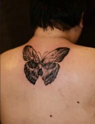 男人后背蝴蝶纹身图案