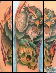 推荐一款热门的猫头鹰纹身图案