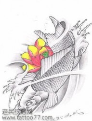 灰色鲤鱼和彩色莲花纹身手稿