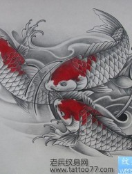 流行经典的锦鲤鲤鱼纹身手稿