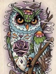 前卫很酷的一张猫头鹰纹身手稿