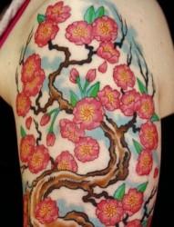 纹身520图库:大臂梅花文身图片图案