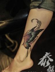 美女颈部漂亮流行的蝴蝶翅膀纹身图片