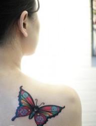 美女肩背漂亮前卫的彩色蝴蝶纹身图片