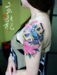 美女手臂漂亮前卫的彩色蝴蝶纹身图片