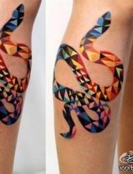 腿部前卫好看的概念风格的蛇纹身图片